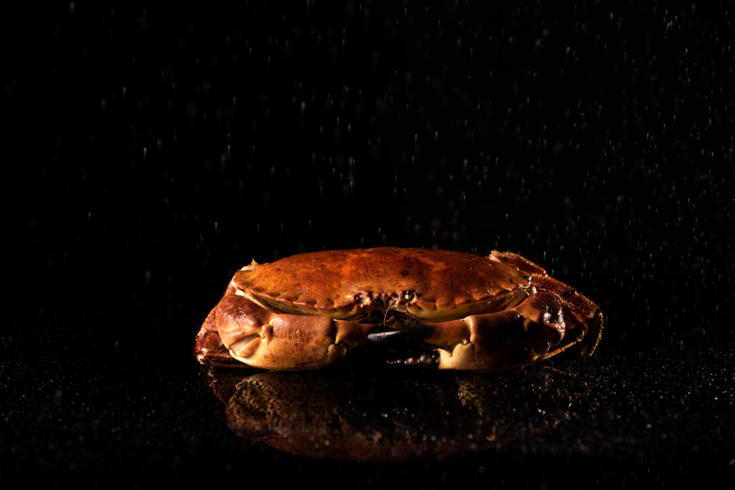 Rantree Maastricht krab