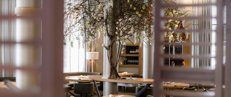 Restaurant Beluga Maastricht, star restaurant